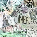 Cineplexx-TigerTrapCDS-web