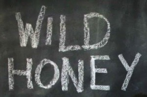 WildHoney-logo