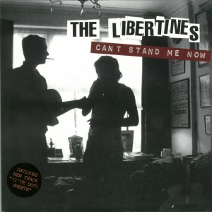 Libertines-cantstand7